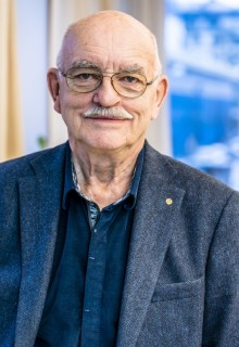 Carl-Johan Wangerud